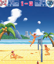 java-игра Leisure Suit Larry Bikini Beach Volley